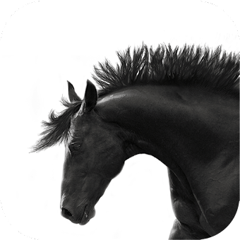 Mod Hacked APK Download Horse Training App 50+