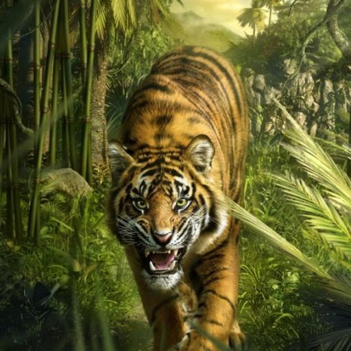 Tigers part 3
