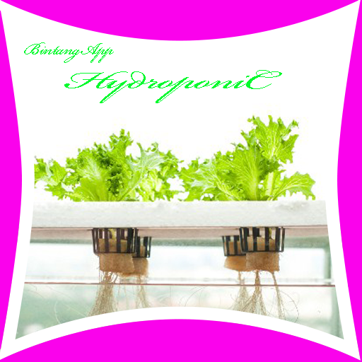 Hydroponic Farm Ideas Android APK Download Free By Bintangapp