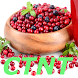 Low Histamine Diet - Androidアプリ