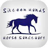 Sixteen Hands Horse Sanctuary