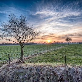 sunset above a meadow by Egon Zitter - Landscapes Prairies, Meadows & Fields ( grass, sunset, agriculture, meadow, dutch )
