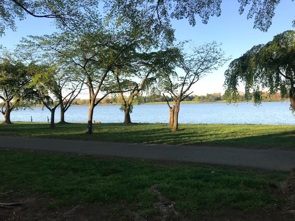 West Potomac Park - Washington, DC