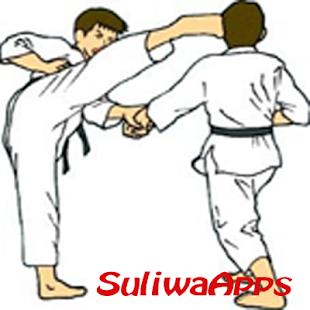 Best Karate Technique - náhled