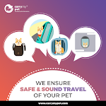 Trusted Pet Relocation Services in India - Carrymypet