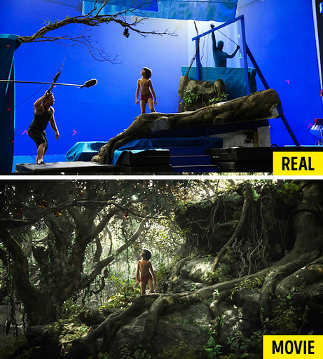 <i>Nguồn: © The Jungle Book / Walt Disney Pictures </i>