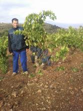 Photo: Félix de Cervera de la Cañada asombrado con las viñas de Atea  (Fotografía y titulo enviado por Javier Lopez Guillen)