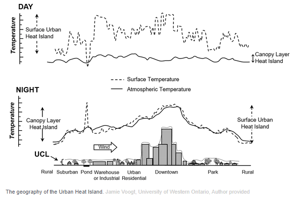 Urban heat islands often appear in cities, particularly in areas with taller buildings and less vegetation.