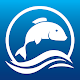 Aquadiscos Aquarismo Download on Windows