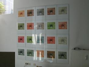 Photo: blumenberger suite  radierungen