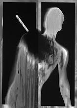 """Photo: © Olivier Perrot Série """"Limites"""" 1997 2 photogrammes contrecollage sur alu 100x45cm"""