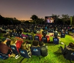 Open Air Movie: Love Actually : Bloemendal Wine Estate