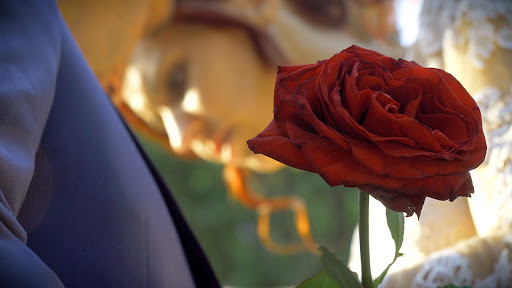 Labtec Prod | Vidéaste mariage | la vie en Rose