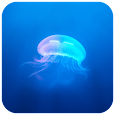 Jellyfish CM locker Theme icon
