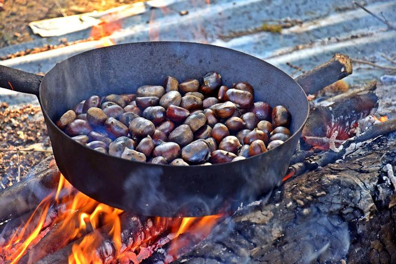 odore di castagne al fuoco di Luciano Fontebasso