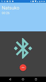 BlueFi Phone