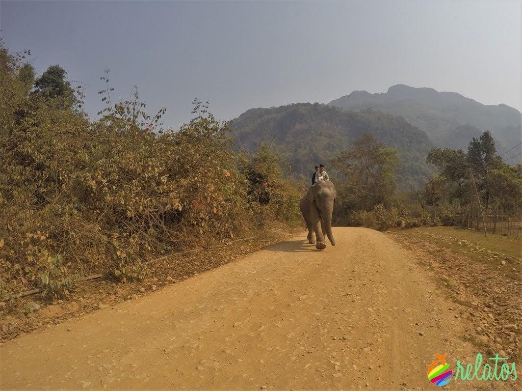 Elefante Vang Vieng