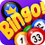 Bingo Party file APK for Gaming PC/PS3/PS4 Smart TV