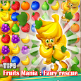 Tips Fruits Mania : Fairy rescue
