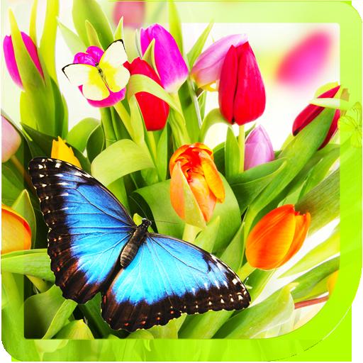 Beautiful Spring livewallpaper LOGO-APP點子