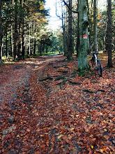 Photo: Jesień w Beskidach jest przepiękna.
