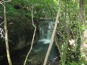 Photo: Giornata mondiale dell'acqua - Monti Picentini – escursione TAM  Sorgente Scorzella