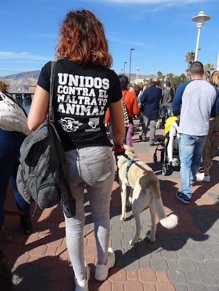 Miles de personas salieron a la calle en toda España.