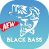 Technique de pêche Black Bass APK