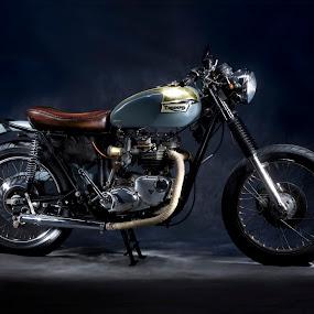 Art of the Bike by Bill  Brokaw - Transportation Motorcycles ( art, motorcycle, brokaw, triumph )