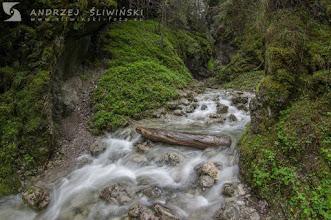 Photo: A Tátrai patakokban általában májusban és júniusban van a legtöbb víz. Fotó: Andrzej Śliwiński