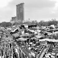 Slum e grattacieli. di