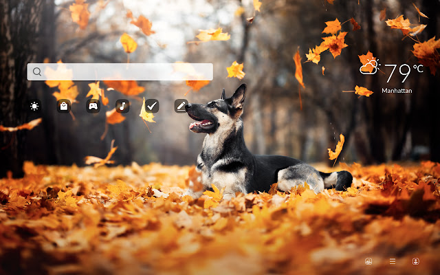 My Fall Animals HD Wallpapers New Tab