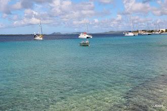 Photo: Mar Caribe de Bonaire