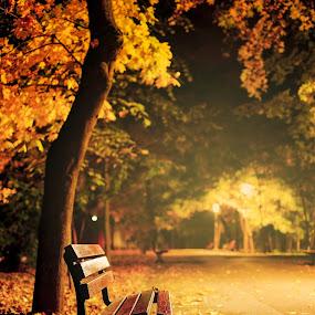 midnight  by Cornelius D - City,  Street & Park  City Parks