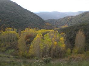 Photo: -el arroyo de La Ribera, por ahí vamos a bajar