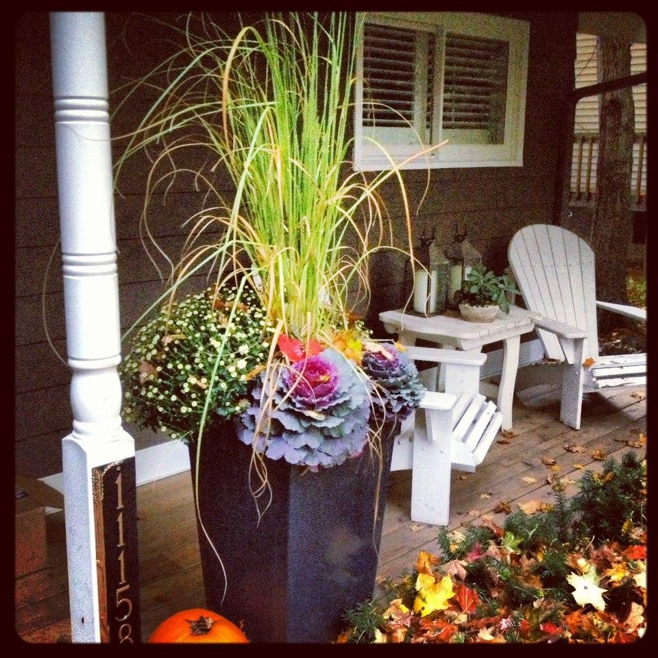 Container Gardening Thriller