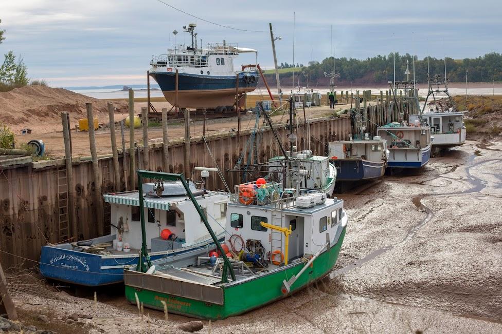 Nowa Szkocja, pływy morskie