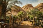 Captain's Desert Camp