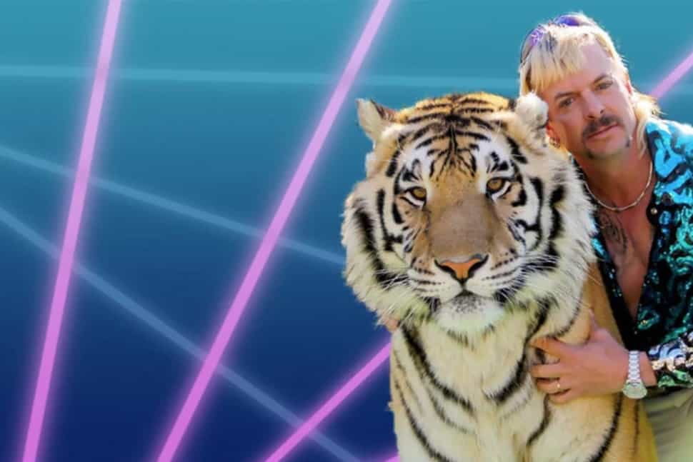 funny zoom background photos - tiger king