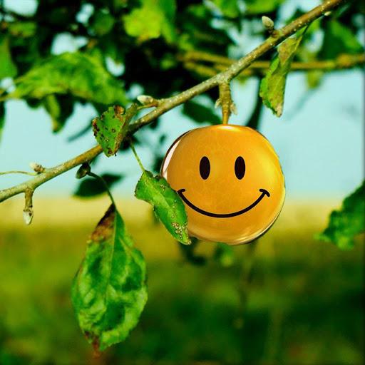 Smiley Pro Live Wallpaper