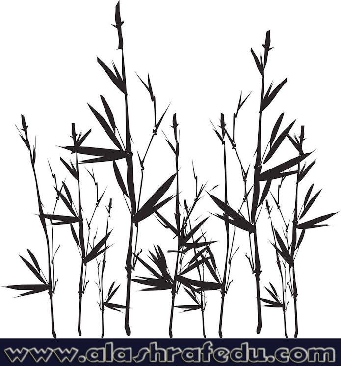 Bamboo Silhouette kT3lXL-n6b3uNS-r1vBi