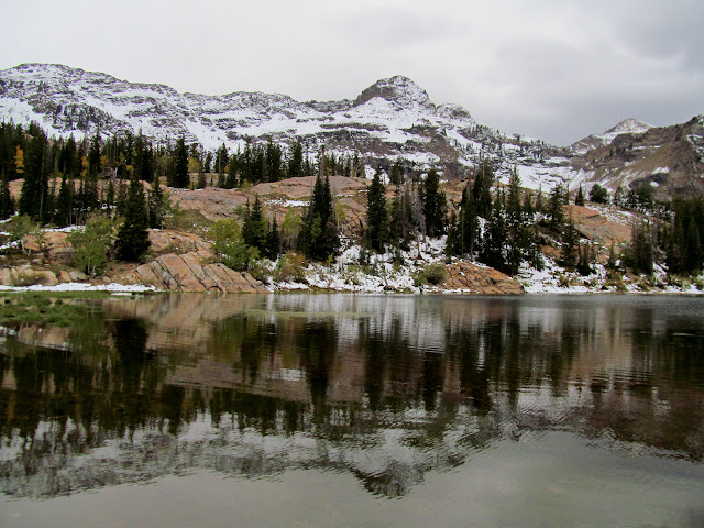 Dromedary Peak reflected in Lake Blanche