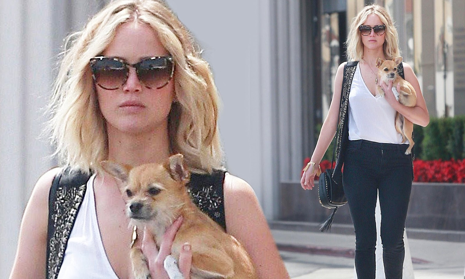 In a different photo of Jennifer when she was with her pet at the airport.