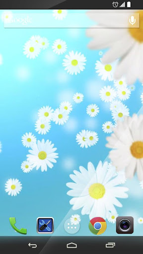 Falling Daisies HD Wallpaper