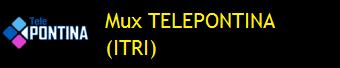 MUX TELEPONTINA