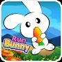 Bunny Run: Jungle Rabbit Carrot