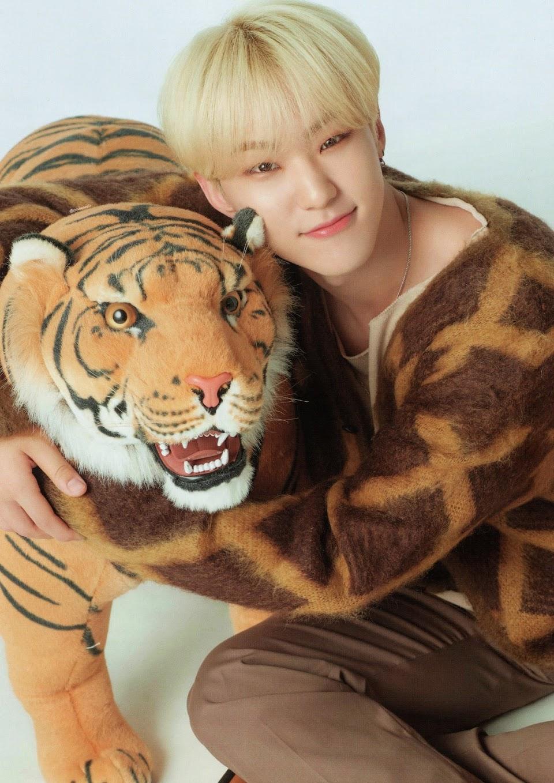 seventeen hoshi horanghae tiger