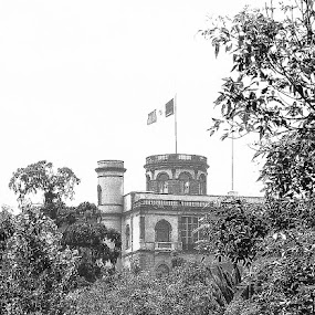 chapultepec BW by Bill Steffler - Buildings & Architecture Public & Historical