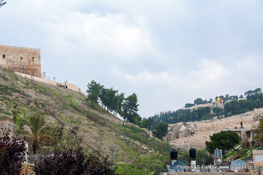 Кедронская долина в Иерусалиме между Храмовой горой и Масличной горой. www.isravisit.co.il