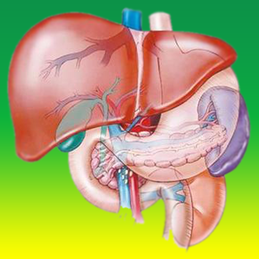 علاج الكبد